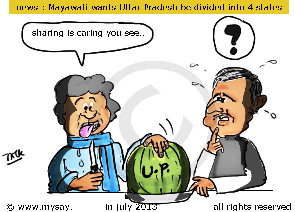 mayawati cartoon,mulayam singh cartoon,uttar pradesh division cartoon,telangana impact cartoon,political cartoons,mysay.in