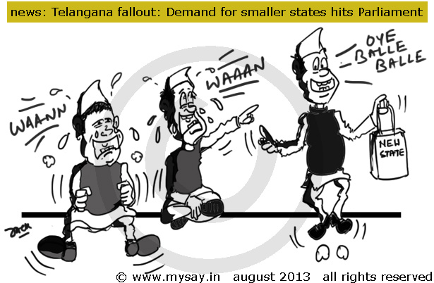 telangana cartoon,demand for smaller states increase,political cartoon,mysay.in,bodoland demand,gorkhaland demand,