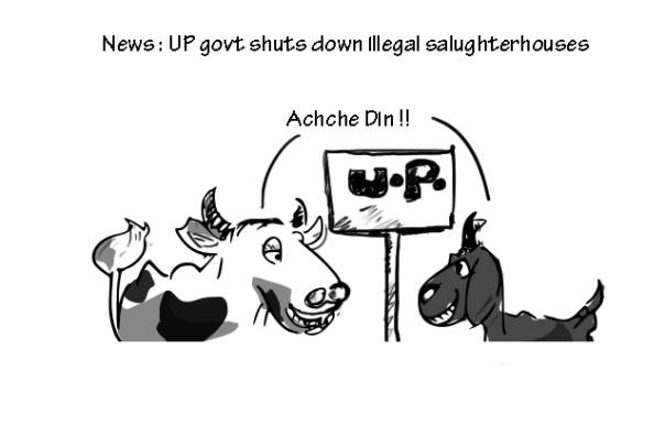 up illegal salughterhouse ban cartoon